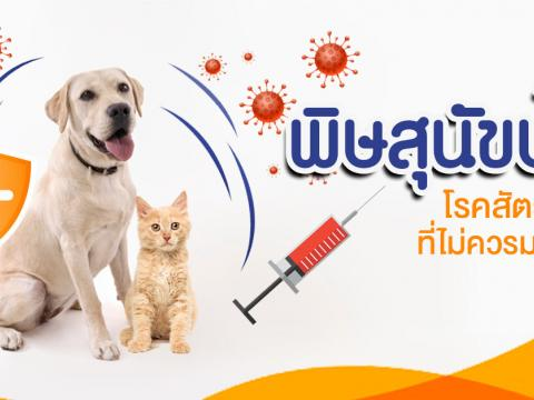 สำรวจประชากรสุนัขและแมว 2564